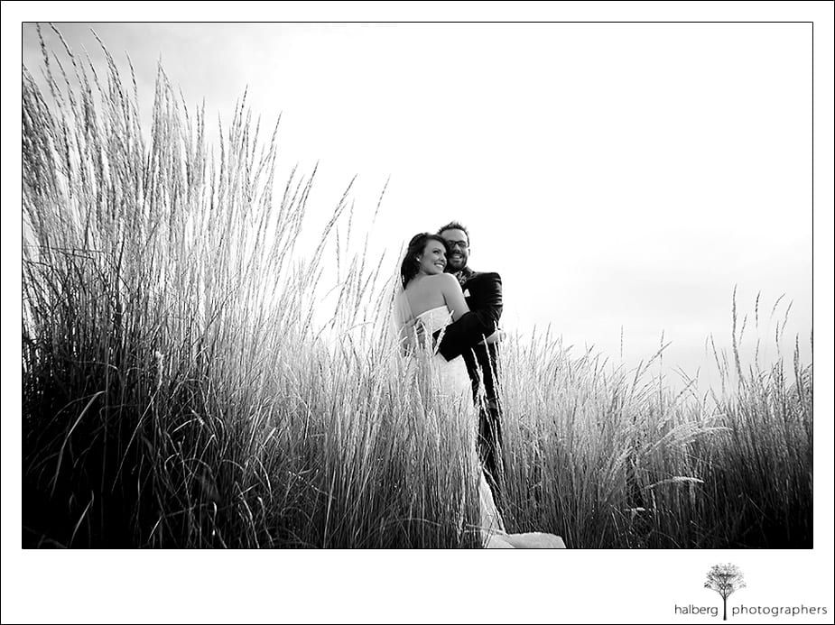 Steve and Darcy's wedding portraits amidst wheat at Hotel Bellwether