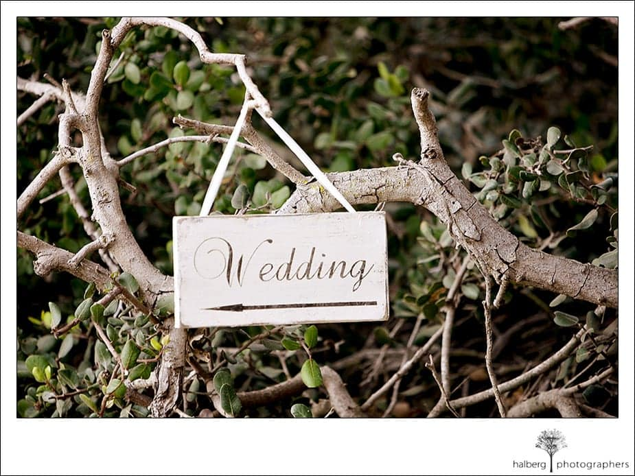 wedding sign hanging on Dos Pueblos Ranch tree branch