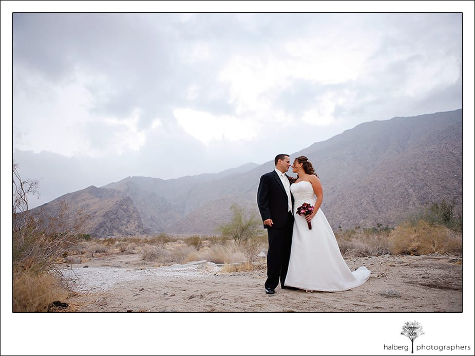 bride and groom portraits in Palm Springs, California