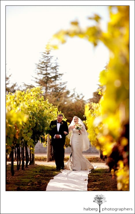 dad walking bride down isle at chateau julien wine estate
