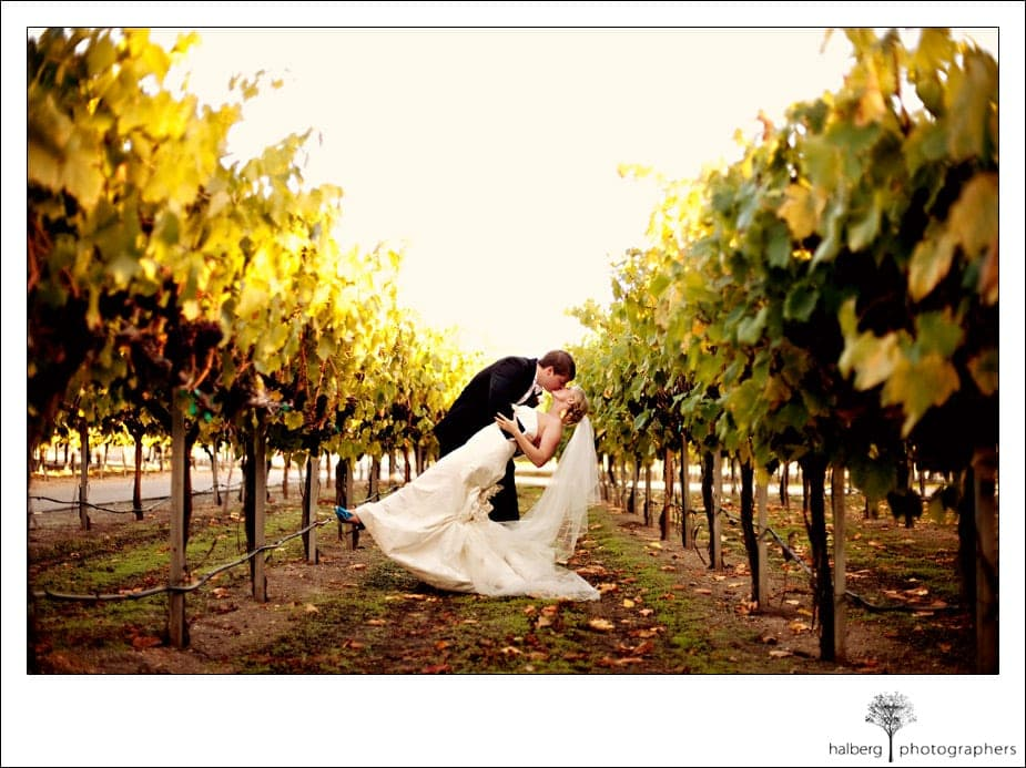 bride and groom kissing in vines at chateau julien wine estate
