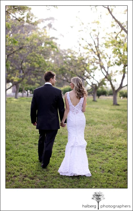 bride and groom walking in the walnut grove in moorpark
