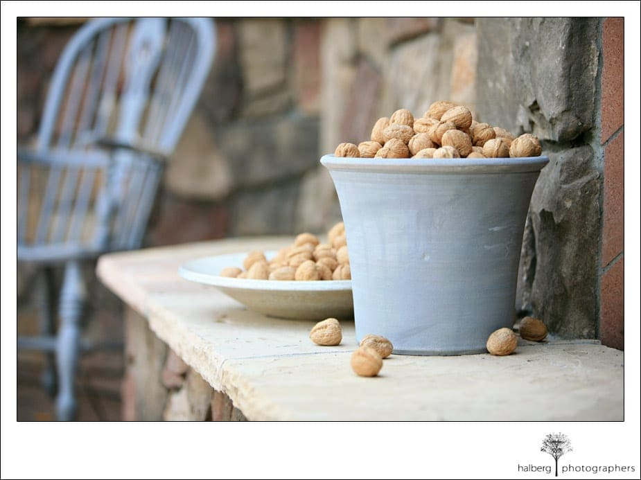 bucket of walnuts as wedding accent at the walnut grove
