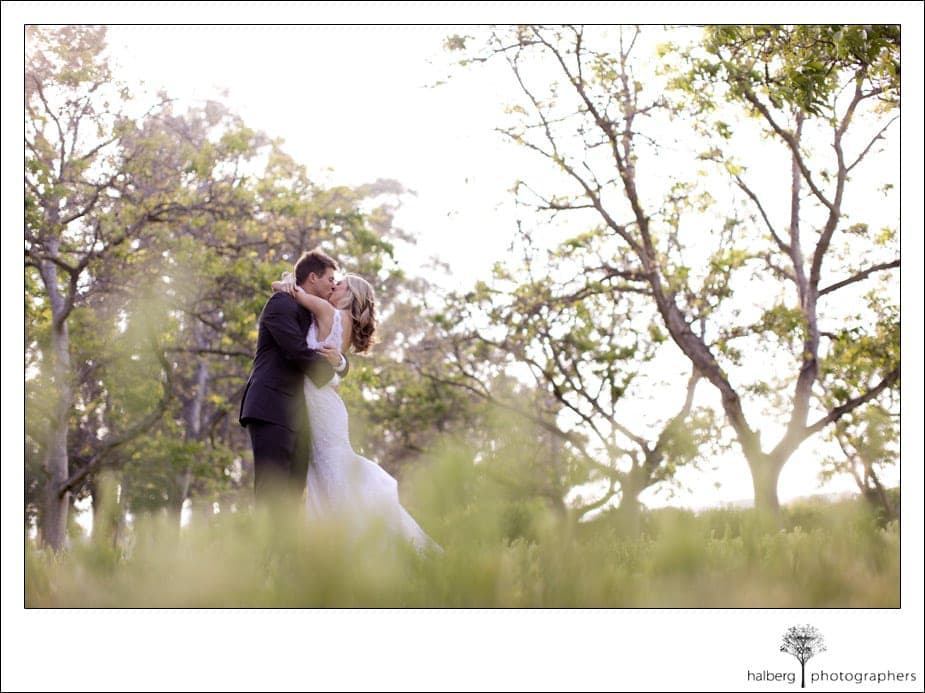 bride and groom kissing in the walnut grove in moorpark