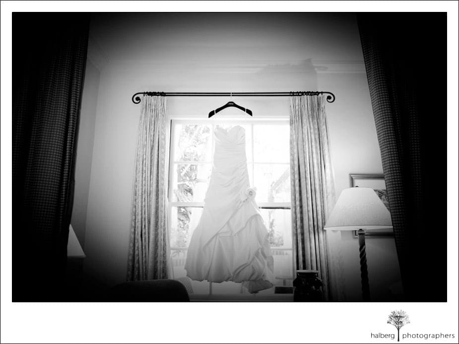 wedding dress hanging in front of biltmore window