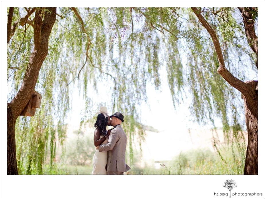 bride and groom kissing under willow trees at their san francisco wedding