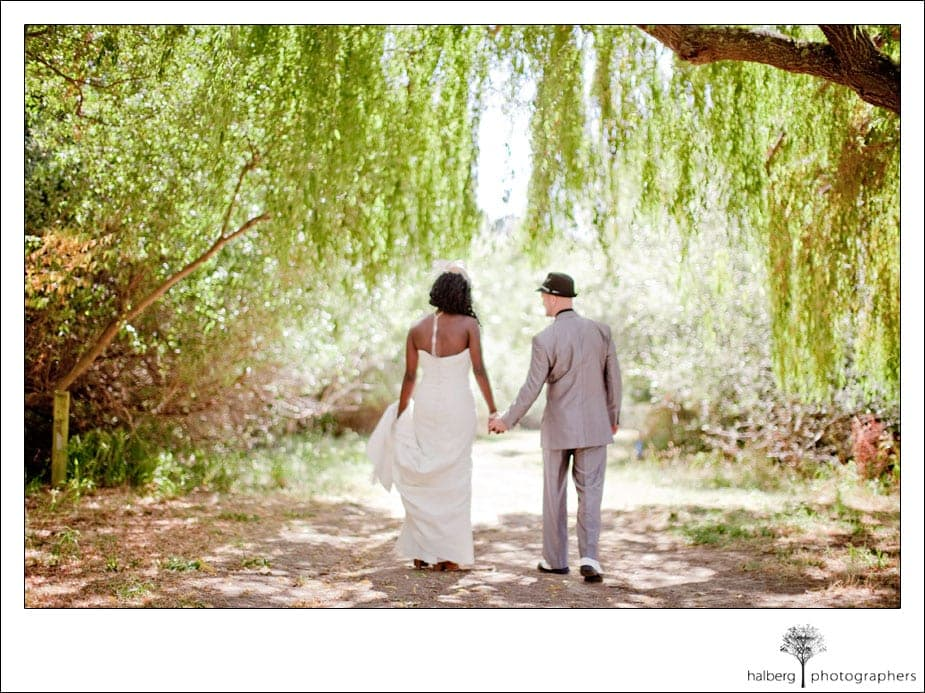 bride and groom walking holding hands under willow tree at their san francisco wedding