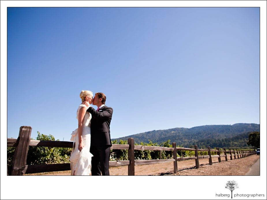 bride and groom kissing in front of grapevines