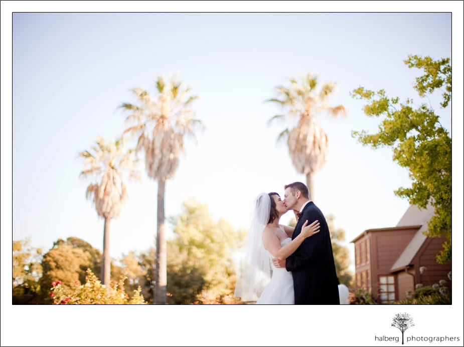 bride and groom kissing with palm trees in background