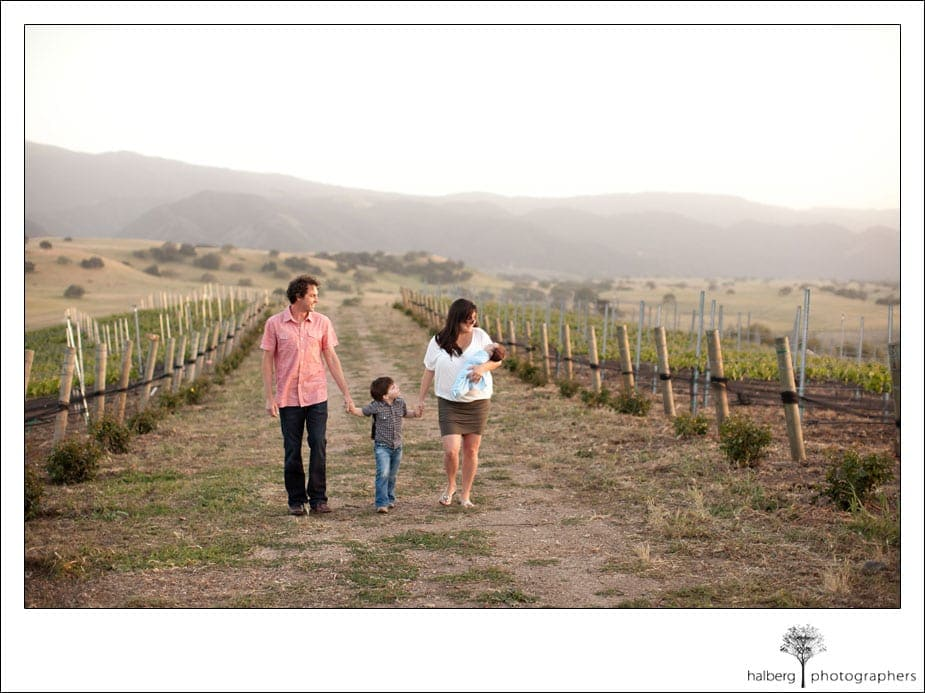 santa ynez portraits of family walking through vines