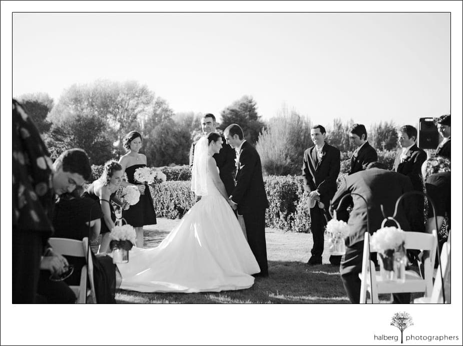 shoestring winery wedding special moment between bride and groom