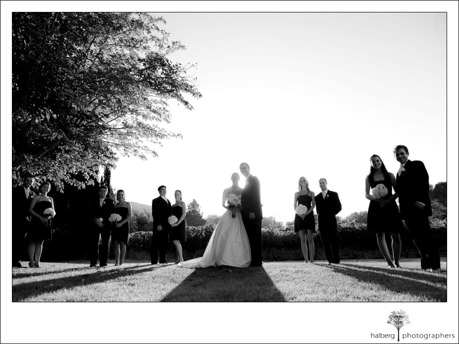 bridal party formals at shoestring winery wedding
