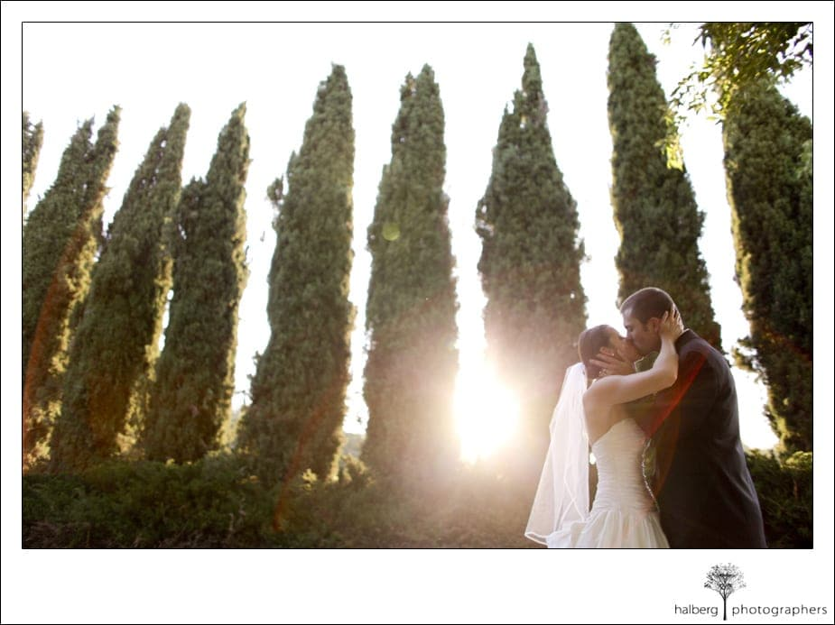 bride and groom kissing at their shoestring winery wedding