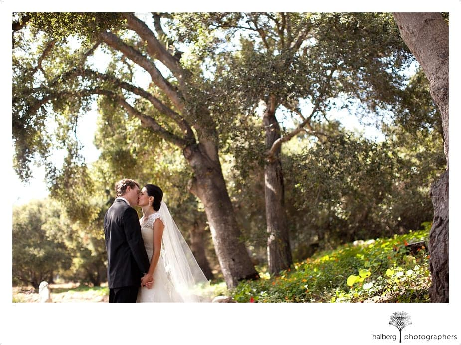 Hearstone ranch bride and groom under trees after their wedding