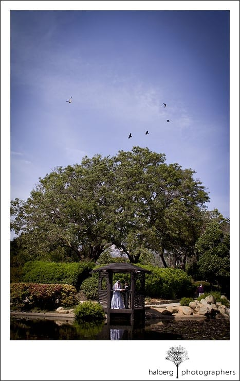 bride and groom portraits in park after their santa barbara courthouse wedding