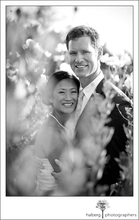 portrait of bride and groom at their Elings Park Wedding