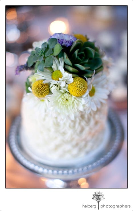 wedding cake with succulents at La Cumbre Country Club