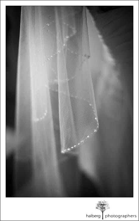 detail of bride's veil at her Nicholson Ranch Wedding