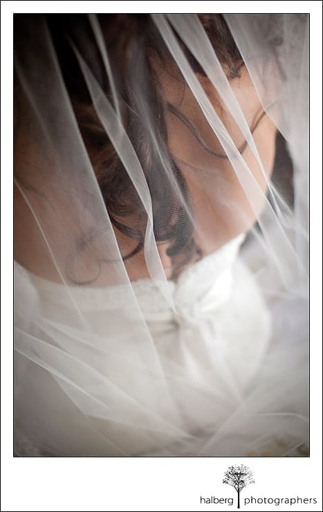 Brides vail and back of dress at Garden Pavilion Wedding Sonoma