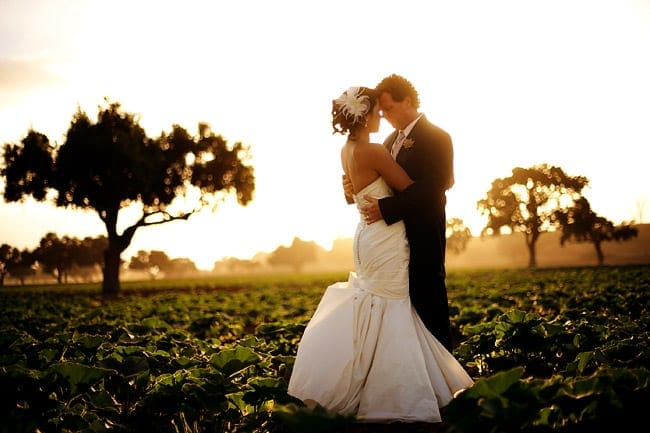 Santa Ynez wedding portraits