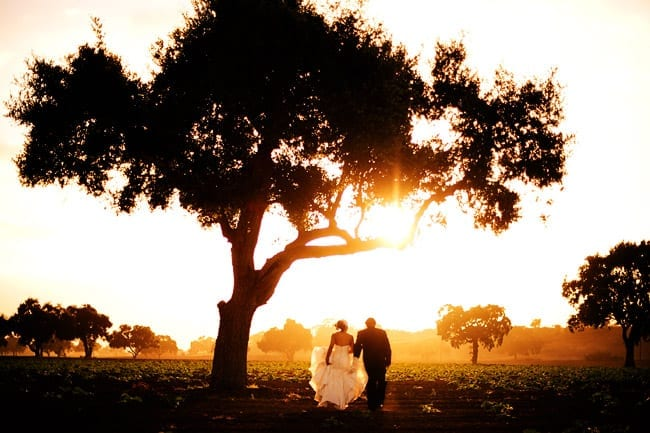 Santa Ynez Wedding adventure