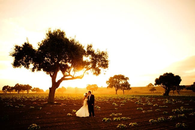 Santa Ynez ranch wedding portraits