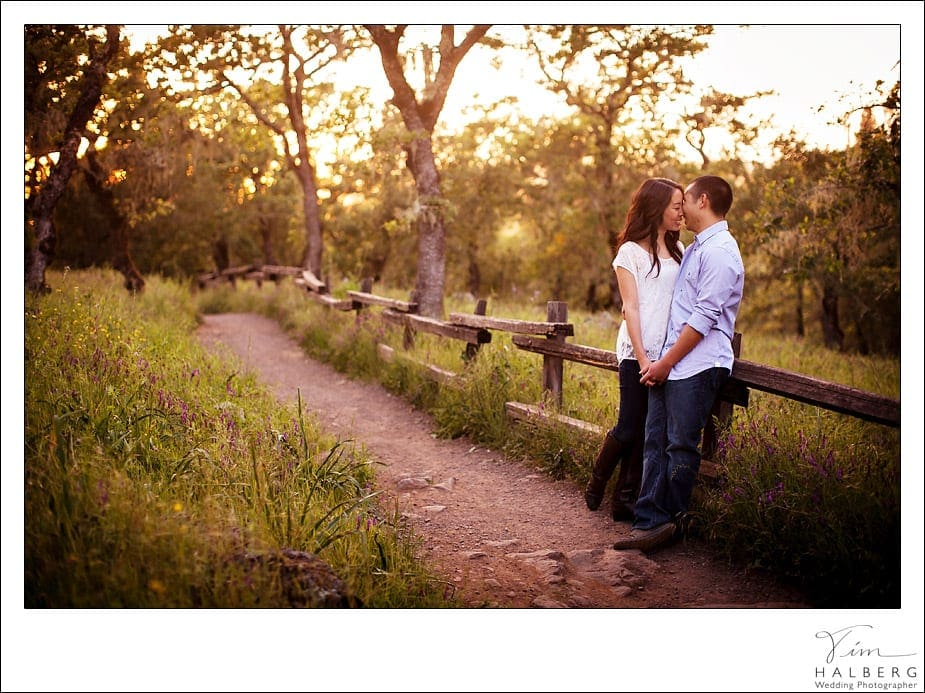 Bryce and Renata's Santa Rosa Engagement