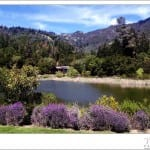 Calistoga Ranch Wedding 01