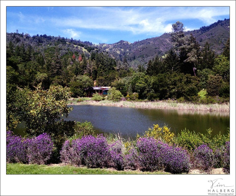 calistoga ranch wedding venue tim halberg california