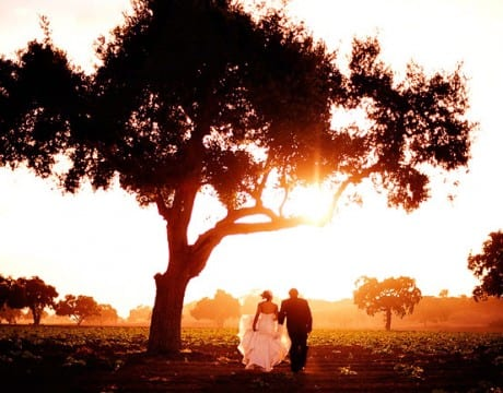 adventurous wedding golden hour