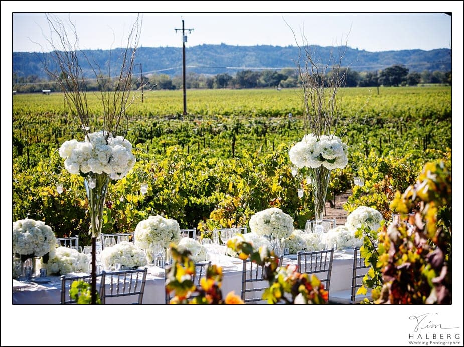 Stryker-Sonoma-wedding-29
