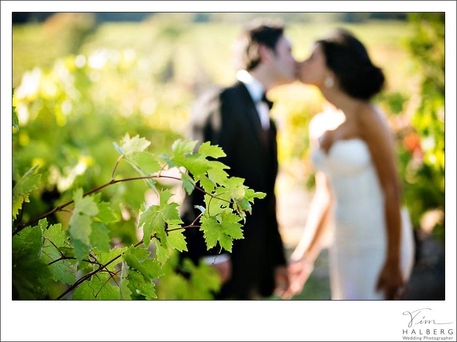 Stryker-Sonoma-wedding-78