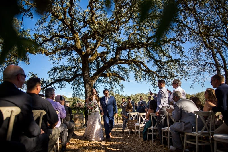 Tim_Haberg_Photography_B_R_Cohn_Winery_Wedding