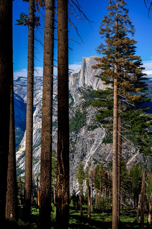 yosemite-wedding-photographer-25