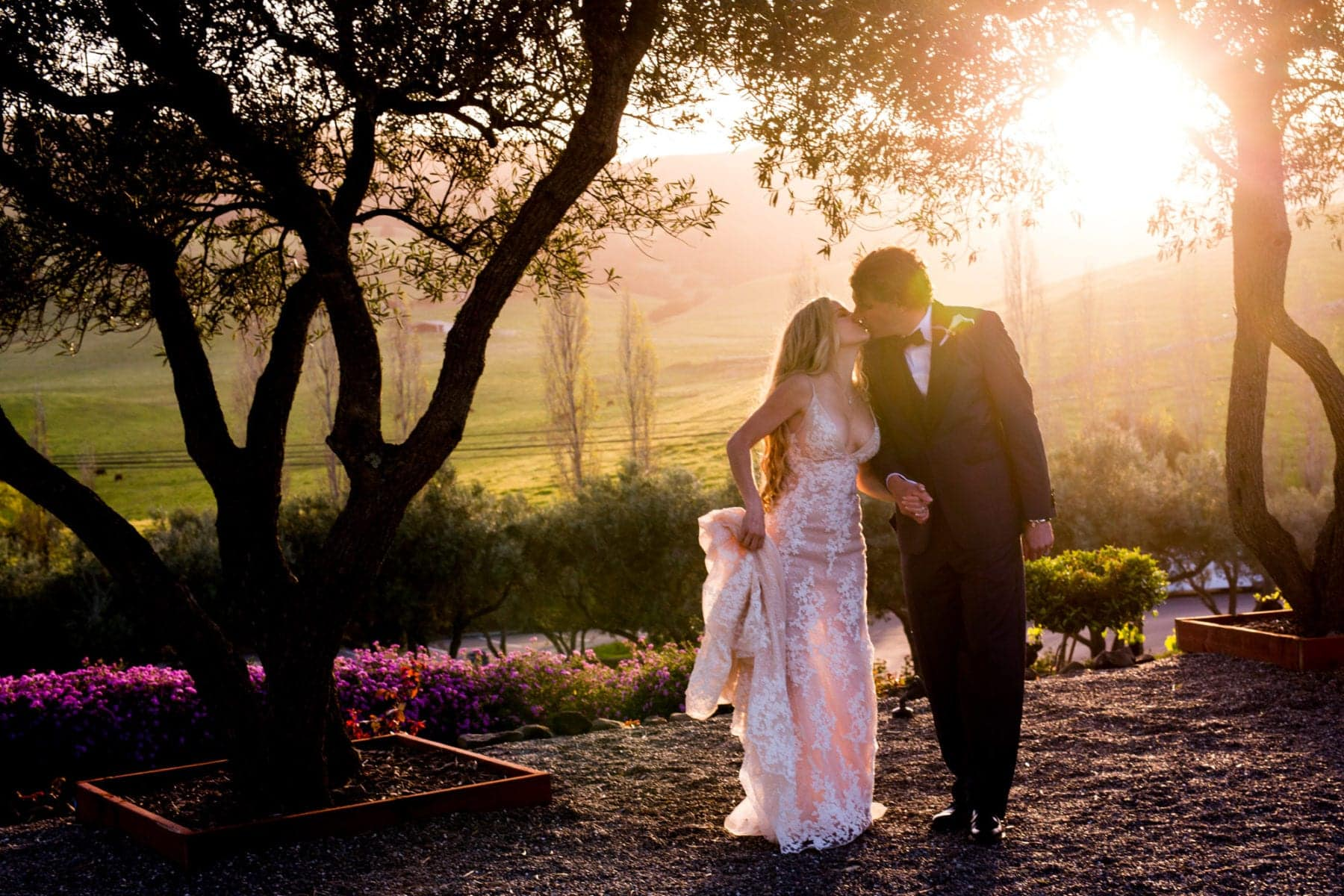 Viansa Sonoma wedding sunset