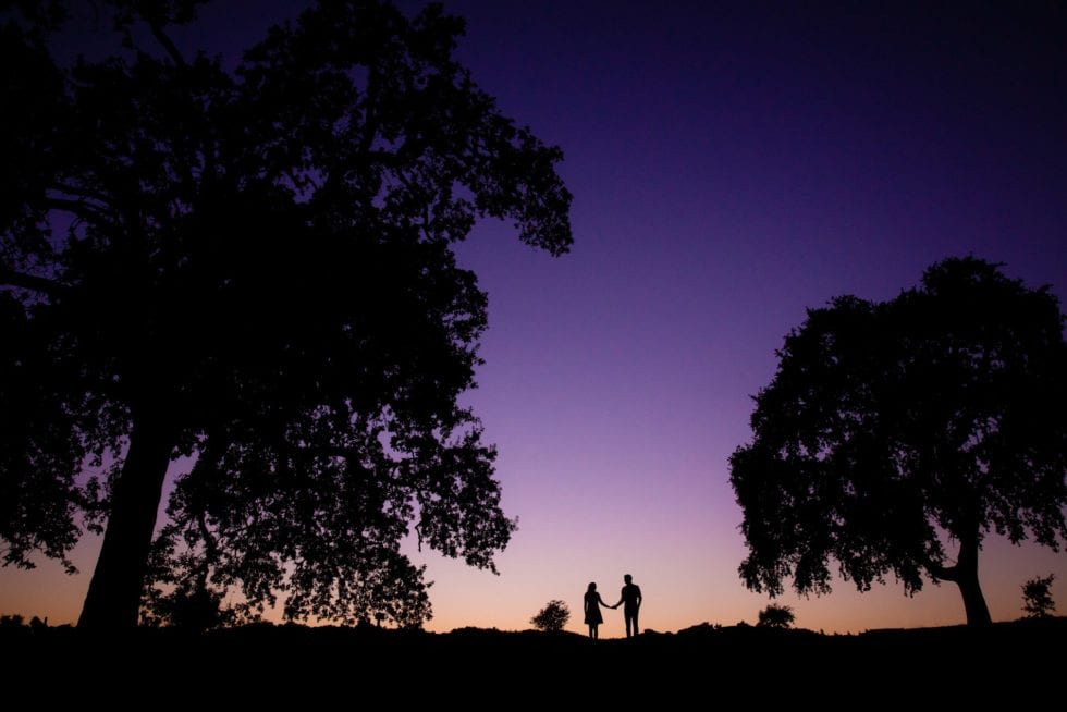 engagement photography session in napa at sunset