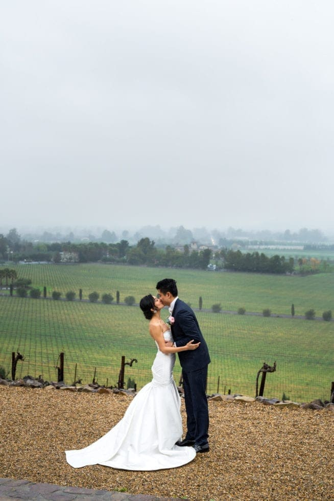 viansa winery wedding photography