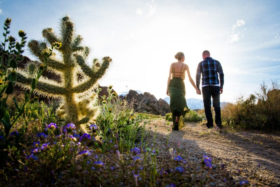 couple holding hands and walking away from camera on dirt road