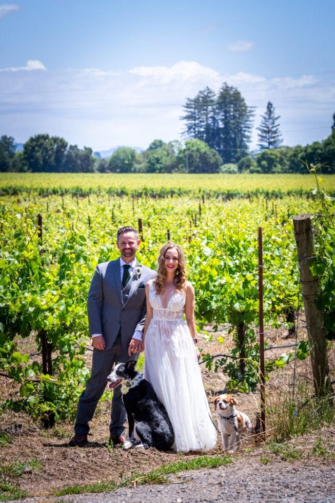 bride and groom smiling with their dogs at griffith woods