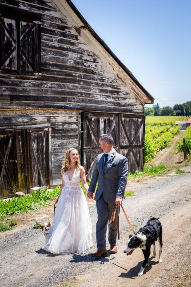 bride and groom walking their dogs next to old barn at griffith woods