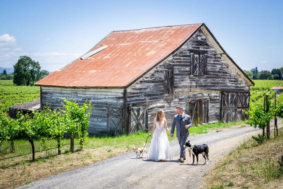 bride and groom walking their dogs on path in front of barn in griffith woods