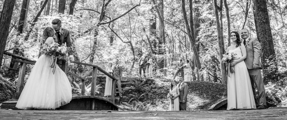 black and white portrait of wedding party at griffith woods