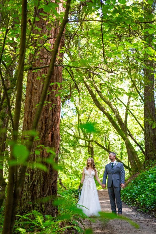 bride and groom walking on path and looking at the trees in griffith woods