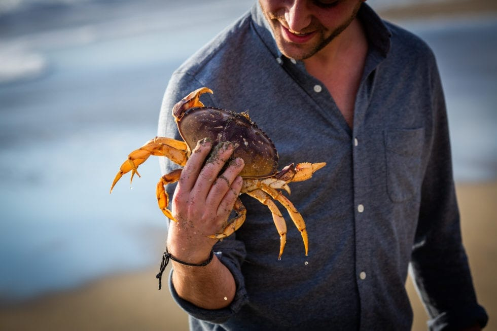 close up of man holding crab
