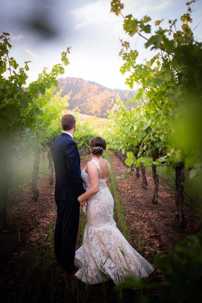 bride and groom holding hands and looking at mountain in vineyard at soda rock winery