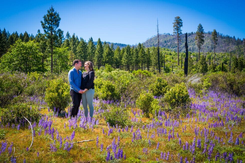 couple holding hands and looking at each other in ahwahnee meadow during yosemite engagement session