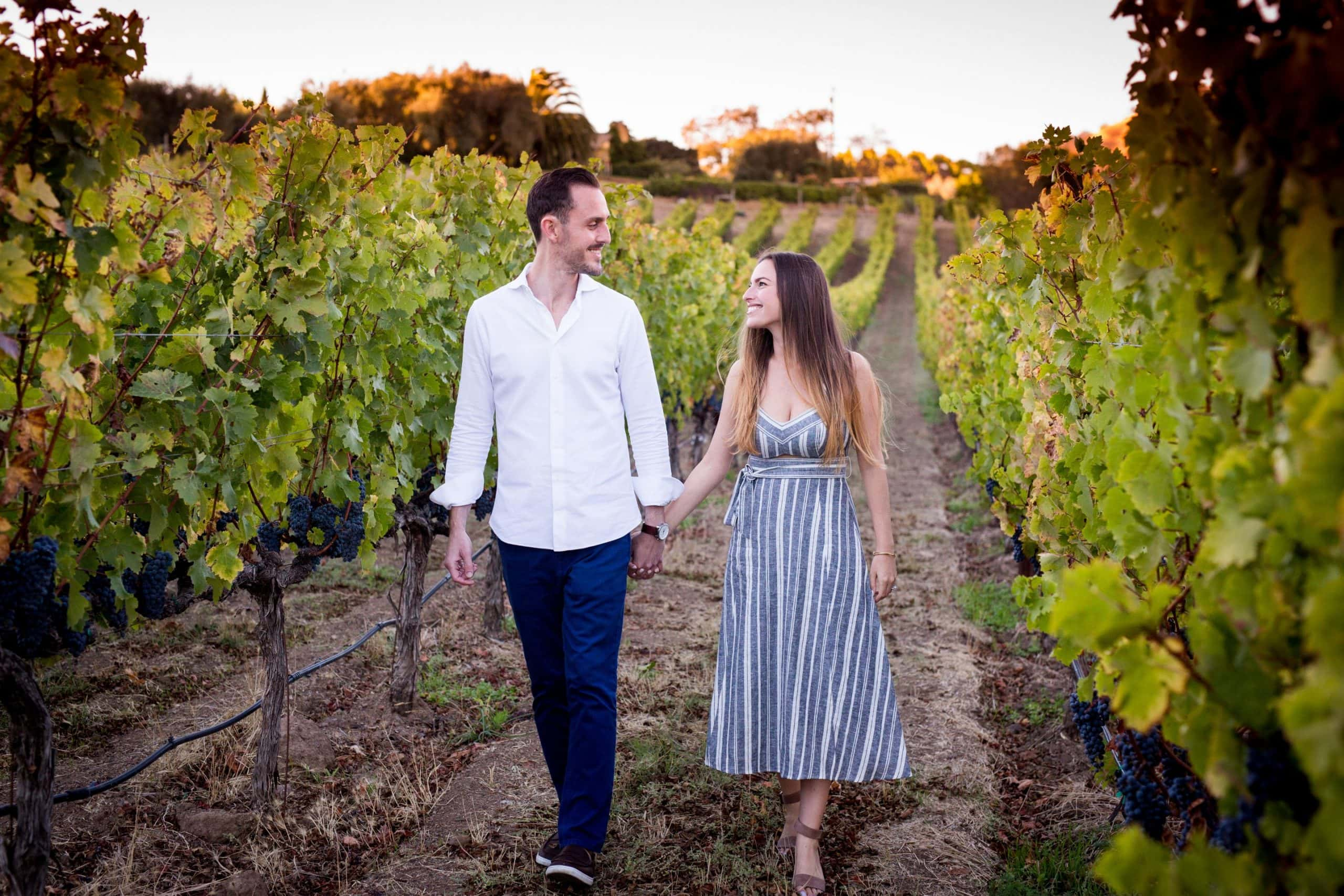 engagement photography couple in vineyard