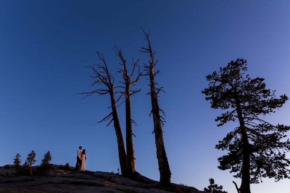 Wedding Photography in Panorama Trail